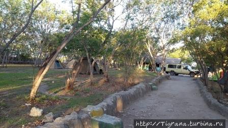 Тарангире_camp